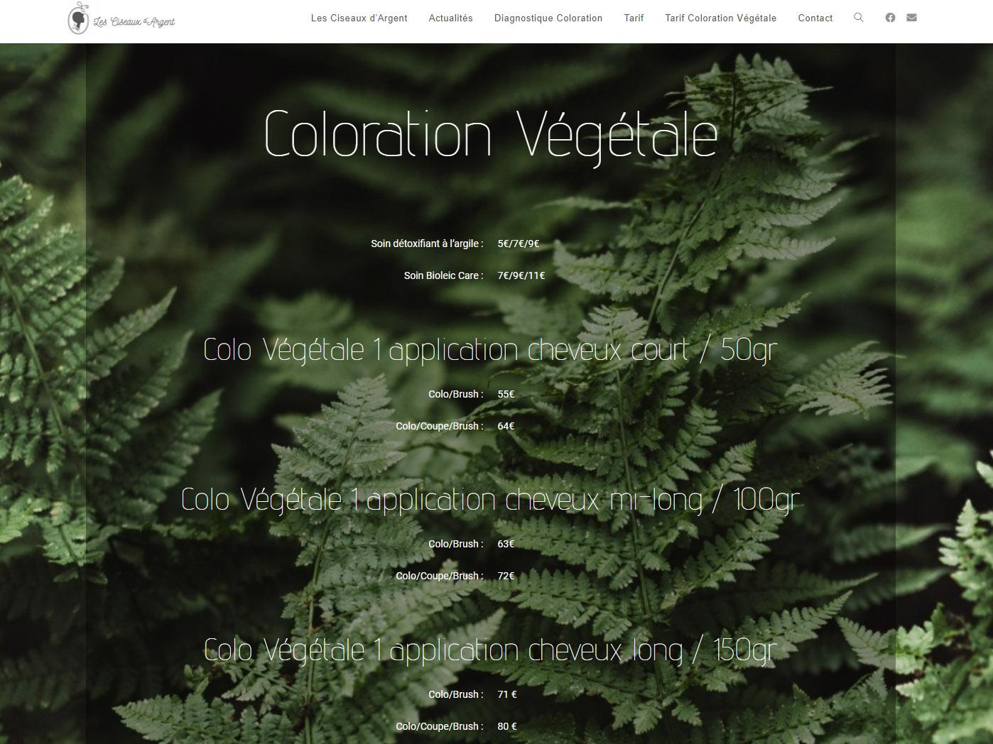 Read more about the article Nouveau site web pour les Ciseaux d'Argent